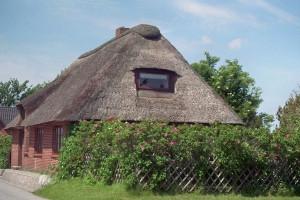 Bild: Moordeichhaus auf Nordstrand - Auszeit unter Reet